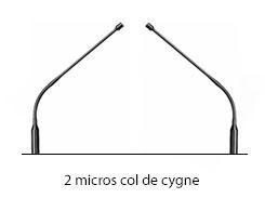 col-de-cygne